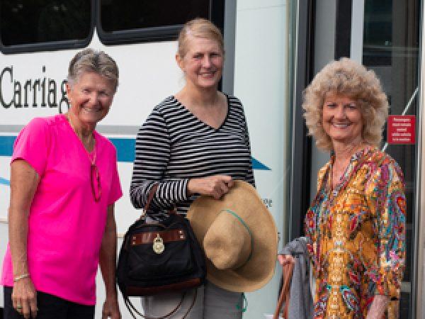Daylily bus 300-